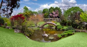 in awe of botanical garden with bridge